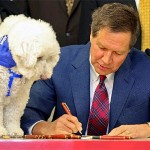 New York and Ohio say NO to Puppy Mills