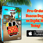 Family Film Helps Save 150+ Animals: Continues to Give Back to Animal Rescue Community